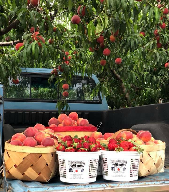 Southern Belle Farm Peaches