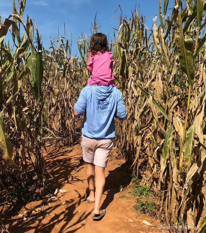 Southern Belle Corn Maze photo credit Emily K.