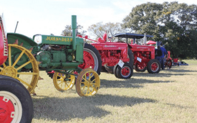 Southern Belle Farm – Join Us for Our Fall Festival & Fall Finale!