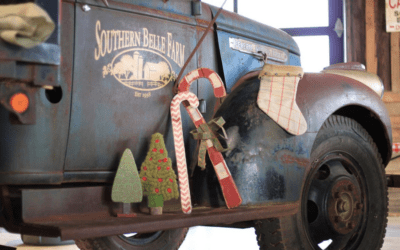 A Farmstead Christmas – Happy Holidays from Southern Belle Farm!