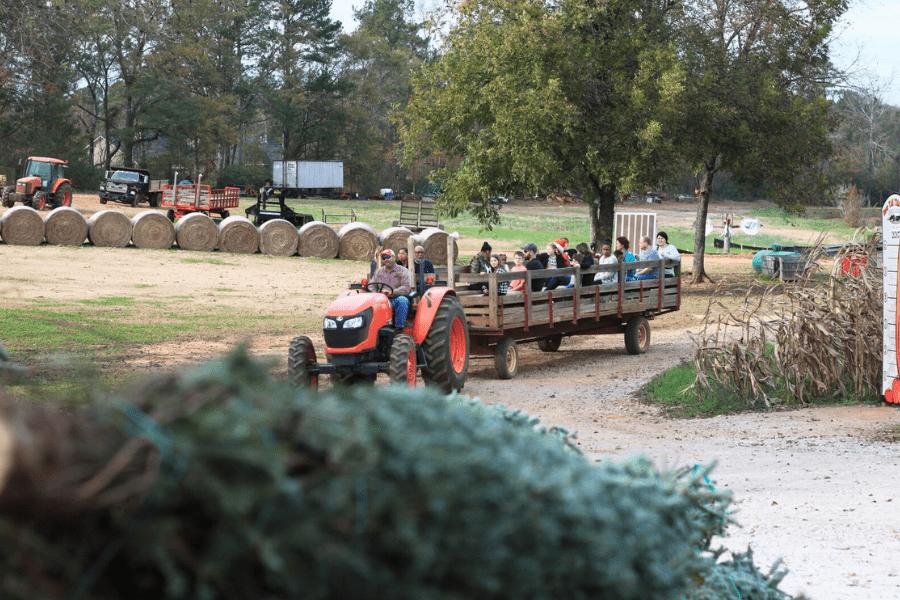 Southern Belle Farm Christmas Hayride
