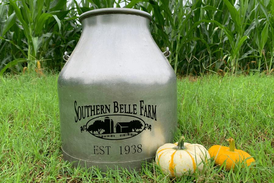 Farm Pumpkin Fall Season