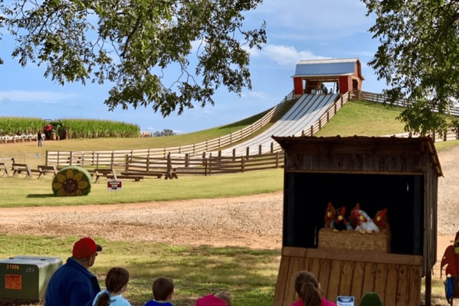 Southern Belle Farm Fall Slide