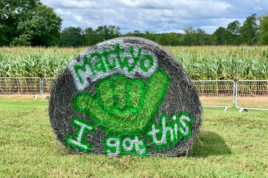 Southern Belle Farm Corn Maze