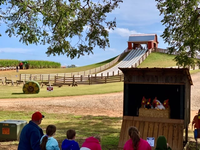 People watching a puppet show with a giant slide in the background