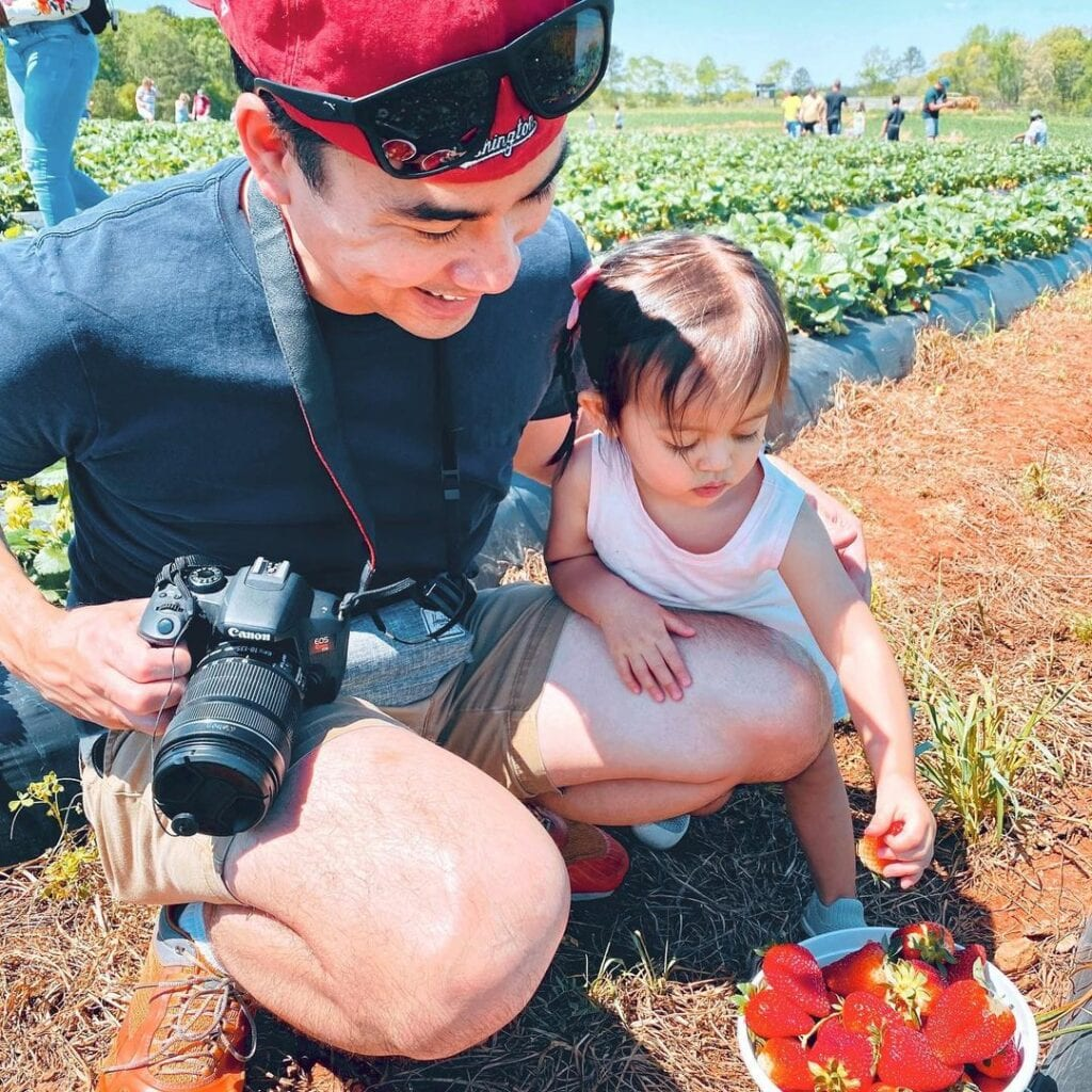 A father and daughter picking strawberries