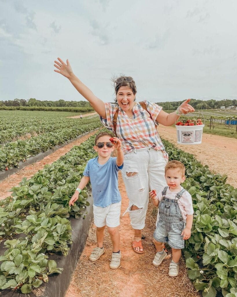 Family picking strawberries at a farm