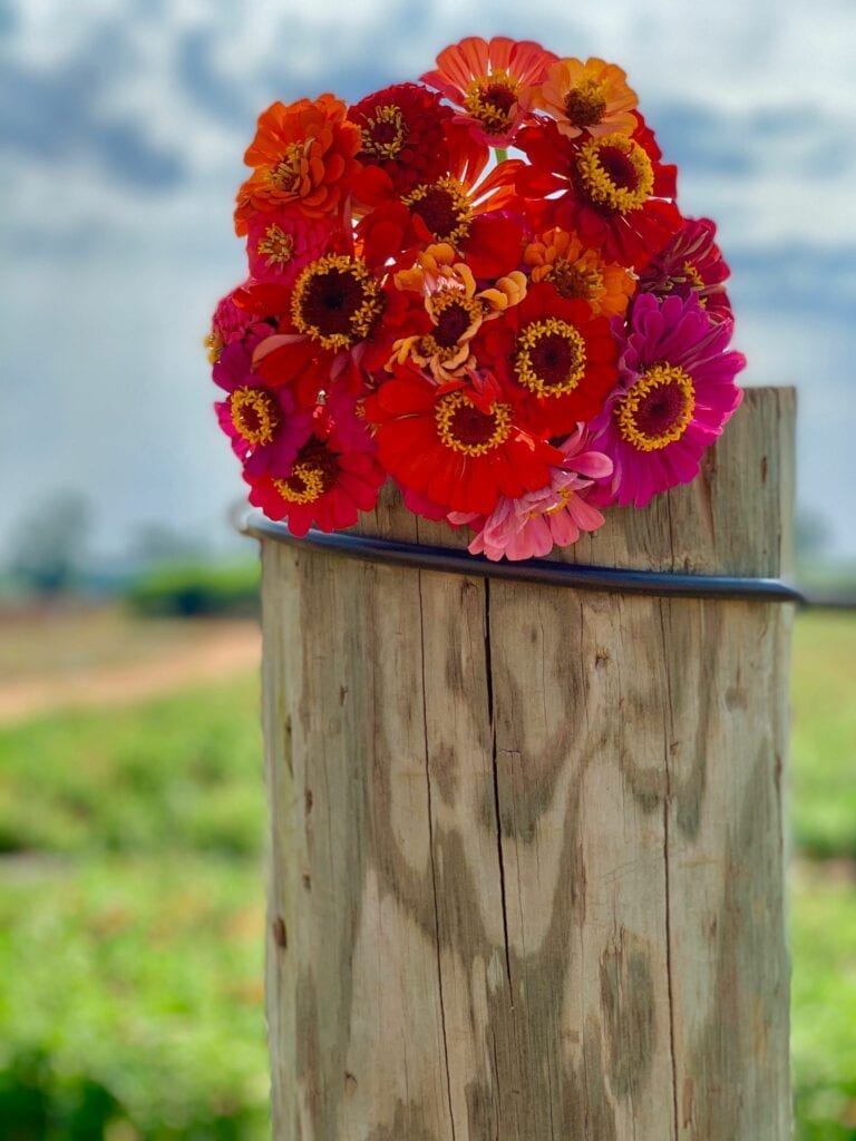 a bouquet of flowers on a fence post